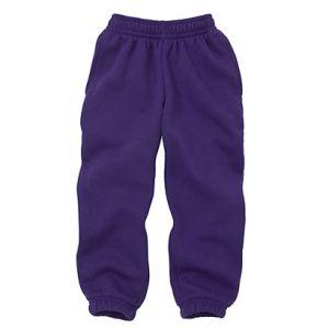 Purple Funky Gym Capri Wholesale